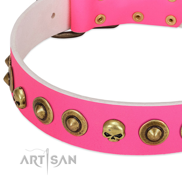 Impressive decorations on genuine leather collar for your canine