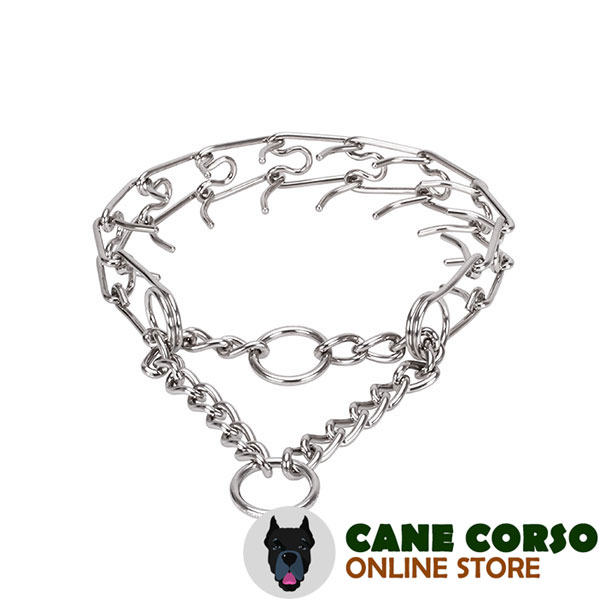 Stainless steel dog prong collar with removable prongs for large dogs