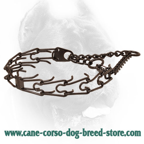 Corrosion resistant black stainless steel pinch collar for ill behaved pets