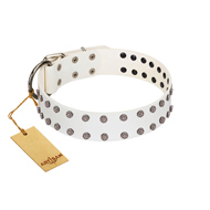 """White Night"" FDT Artisan White Leather Cane Corso Collar with Vinatge Silver-like Studs"