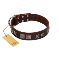 """Needle Stories"" Modern FDT Artisan Brown Leather Cane Corso Collar with Square Engraved Plates and Four-Point Stars"