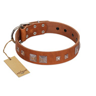 """Egyptian Gifts"" Handmade FDT Artisan Tan Leather Cane Corso Collar with Chrome-plated Pyramids"