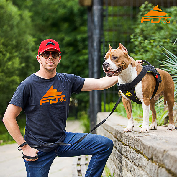 Men T-shirt of Finest Quality Cotton with Professional Logo for Dog Training