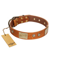 """Ancient Treasures"" FDT Artisan Tan Leather Cane Corso Collar with Antiqued Plates and Studs"