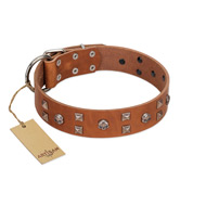 """Enchanted Skulls"" FDT Artisan Tan Leather Cane Corso Collar with Chrome Plated Skulls"