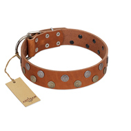 """Ancient Symbol"" Trendy FDT Artisan Tan Leather Cane Corso Collar with Silver- and Gold-Like Studs"