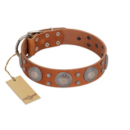 """Far Star"" FDT Artisan Tan Leather Cane Corso Collar with Engraved Studs"