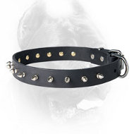Leather Spiked Dog Collar for CANE CORSO
