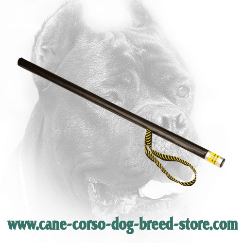 Lightweight Cane Corso Agitation Stick with Nylon Loop