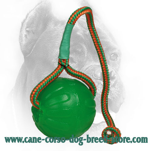 Lightweight Foam Cane Corso Ball for Chewing