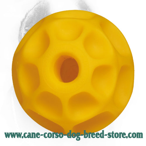 Tetraflex Cane Corso Ball Ideal for Playing