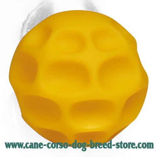 Tetraflex Cane Corso Ball for Chewing