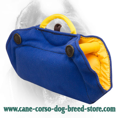 French Linen Cane Corso Bite Builder with Inside Handles Comfy in Use