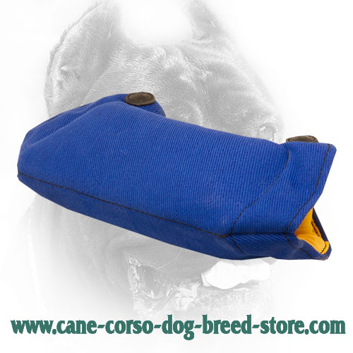 French Linen Cane Corso Bite Builder for Puppy Training