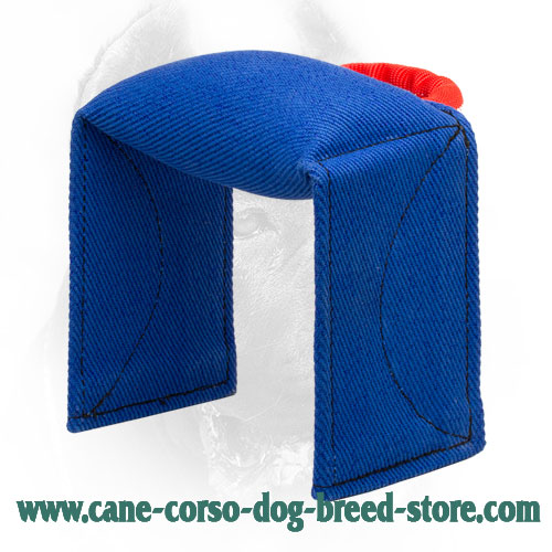 French Linen Cane Corso Bite Pad for Dog Training