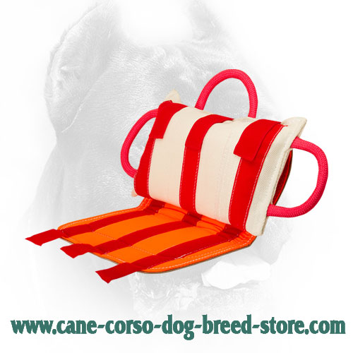 Professional Cane Corso Bite Pillow with Leather Cover