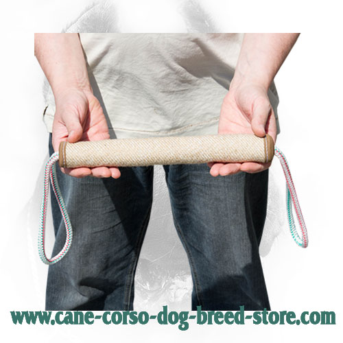 Eco-Friendly Cane Corso Bite Roll Meant for Puppy Training