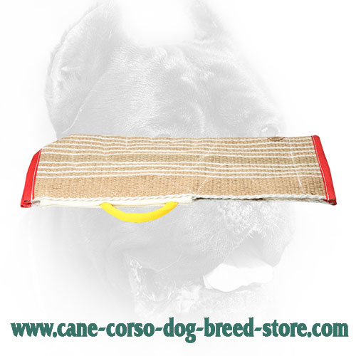Strong Jute Cane Corso Bite Sleeve Cover with Comfy Handle