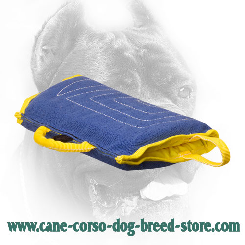 Extra Durable Cane Corso Bite Sleeve with Comfortable Handles