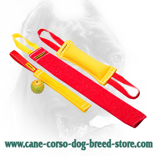 Cane Corso Bite Training Set for Young Dog Training