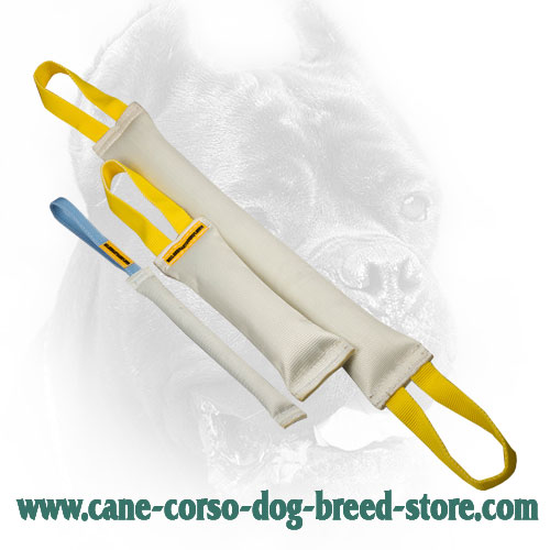 Fire Hose Cane Corso Bite Training Set of 3 Dog Items