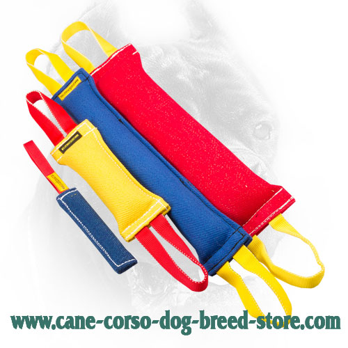 French Linen Cane Corso Bite Training Set of 4 Items