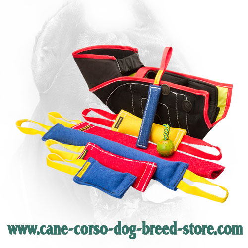 Convenient in Use French Linen Cane Corso Bite Training Set