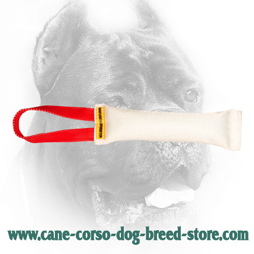Reliably Stitched Cane Corso Bite Tug