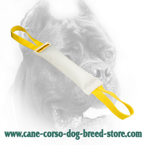 Fire Hose Cane Corso Bite Tug for Puppies
