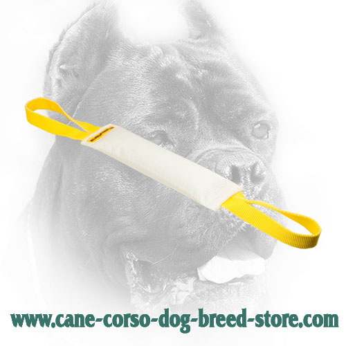 Fire Hose Cane Corso Bite Tug with Nylon Handles