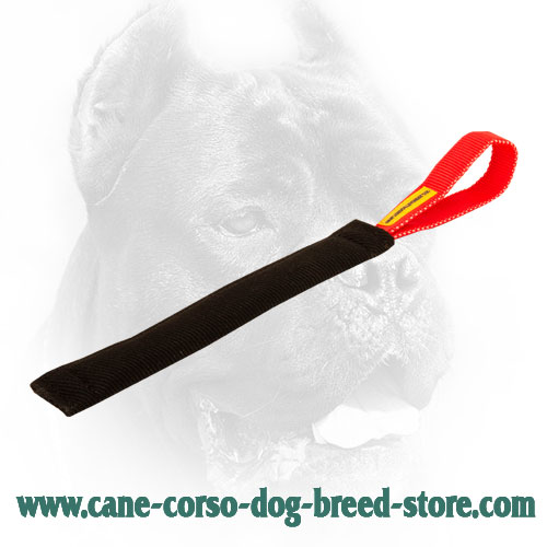 French Linen Cane Corso Bite Tug with Comfy Handle