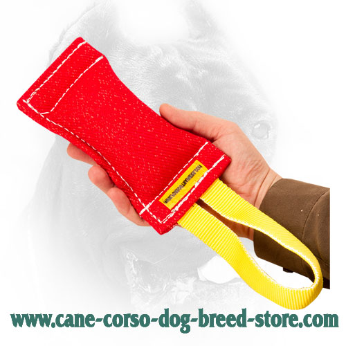 French Linen Cane Corso Bite Tug with Nylon Handle