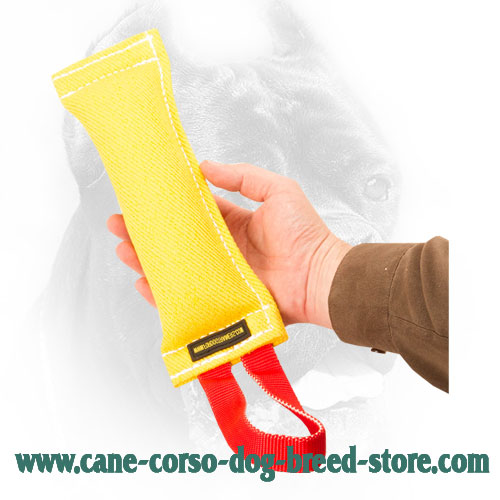 Tearproof Cane Corso Bite Tug with Reliable Handle