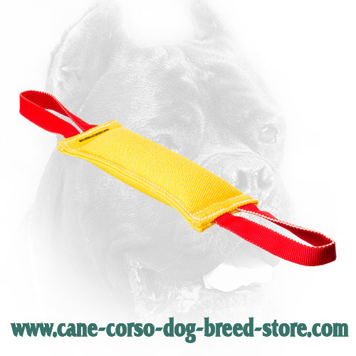 Stitched Cane Corso Bite Tug with Convenient Handles