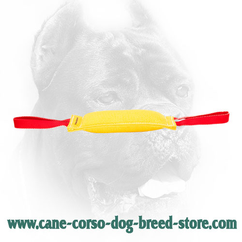French Linen Cane Corso Bite Tug for Dog Training
