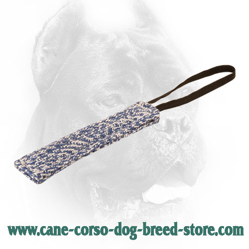 Long Cane Corso Bite Tug with One Handle