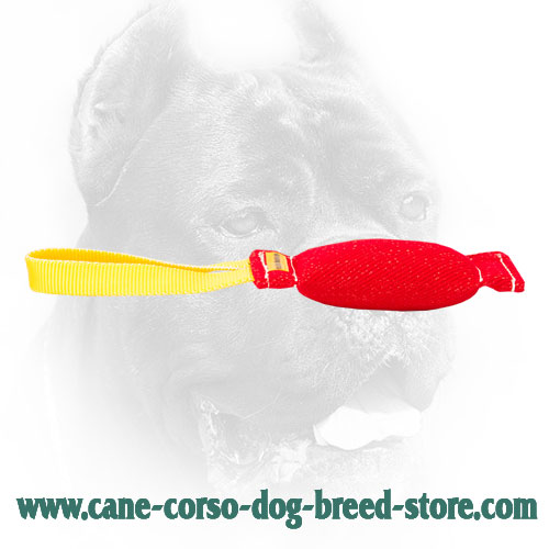 Strong French Linen Cane Corso Bite Tug for Dog Training