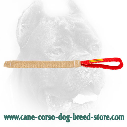 Jute Cane Corso Bite Tug for Bite Skills Developing