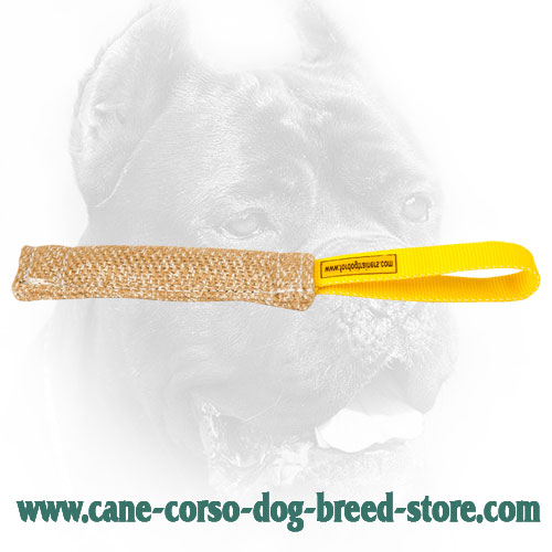 Jute Cane Corso Bite Tug with Stitched Handle