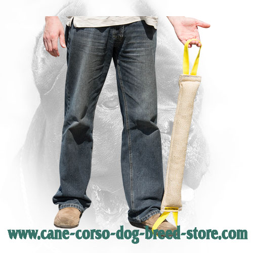 Cane Corso Bite Tug with Two Handles