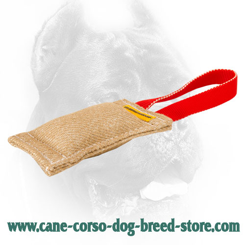 Extra Strong Cane Corso Bite Tug with Easy to Grab Handle