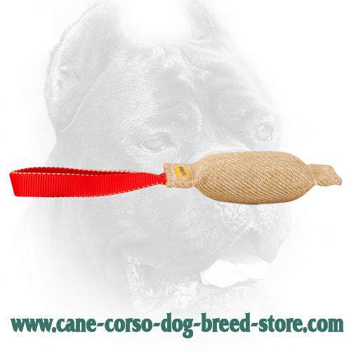 Durable Cane Corso Bite Tug for Training