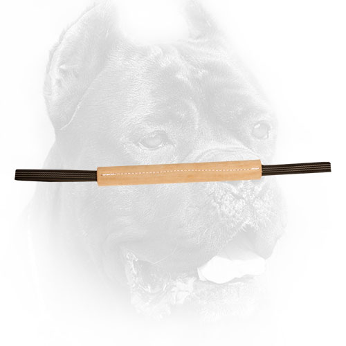 Leather Cane Corso Bite Tug for Puppy Training