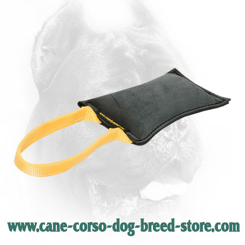 Soft Cane Corso Bite Tug with Comfy Handle