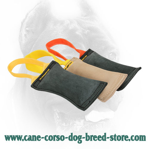 Cane Corso Bite Tug for Field Training