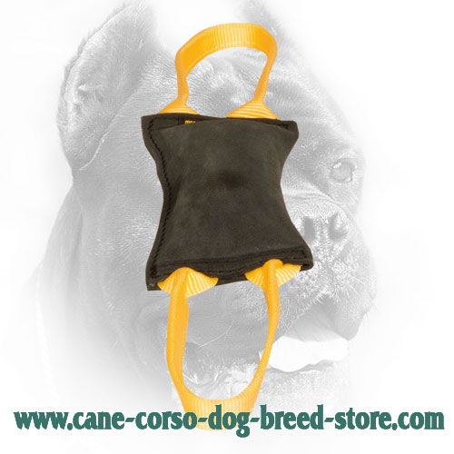 Leather Cane Corso Bite Tug for Young Dog Training