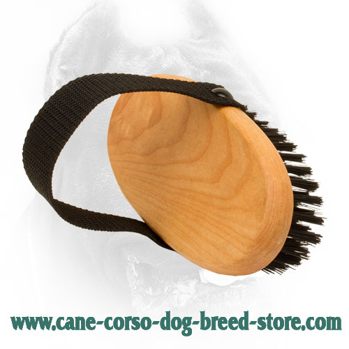 Comfortable to Hold Cane Corso Brush for Daily Grooming