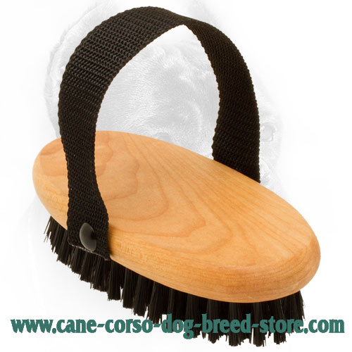 Cane Corso Brush with Strong Handle for Comfy Use