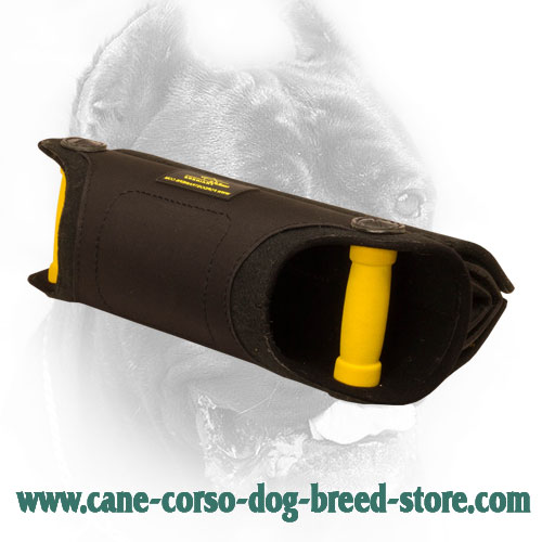 Cane Corso Bite Builder with Padded Handles