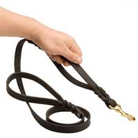 Cane Corso Dog Leash